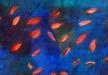 Ruhiges Wasser-50x70
